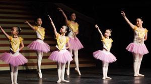 Pink Ballet Studio